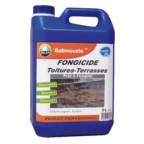 DALEP BATIMOUSTE TT fongicide prêt à l'emploi spécialement conçu pour lestoitures-terrasses et les surfaces gravillonnées. Il élimine les lichens,champignons